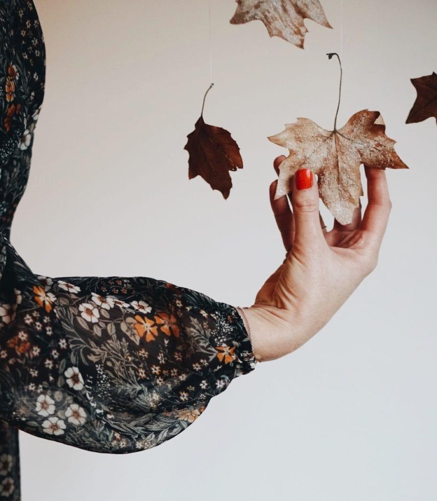 geeiste Blätter die kleine botin
