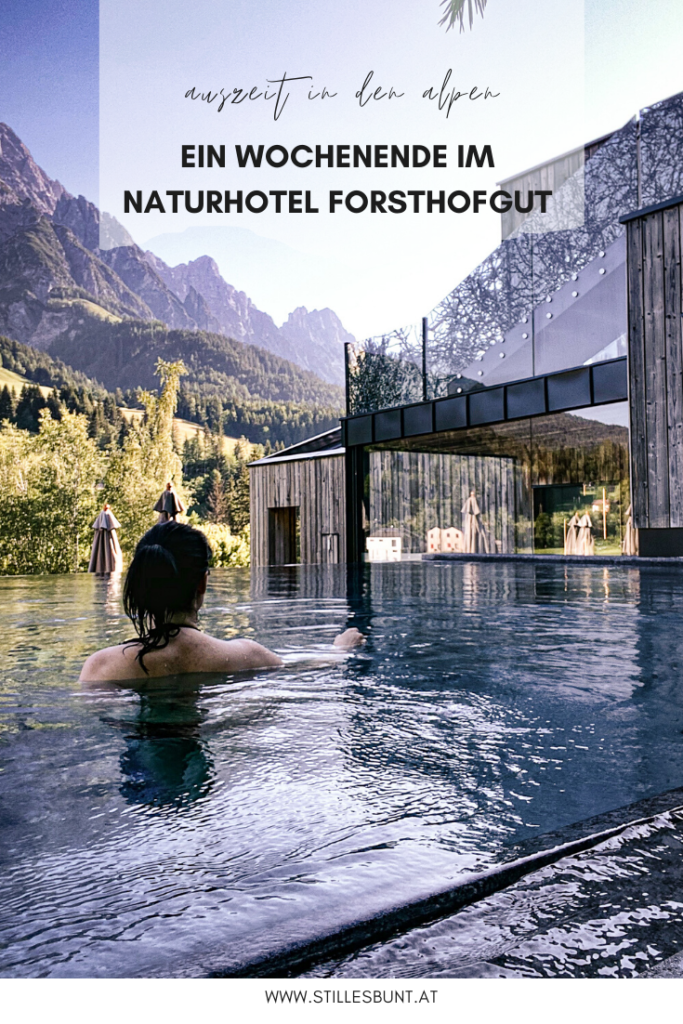 Forsthofgut-stillesbunt-pool4